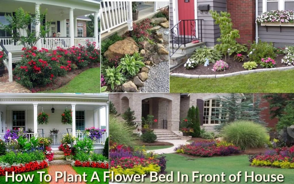 How To Plant A Flower Bed In Front Of House Gardeninghow Com