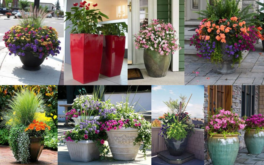 How To Plant Flowers In Large Planters Gardeninghow Com