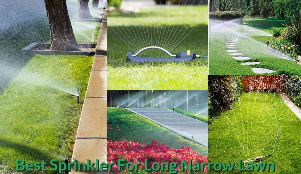 Ideas of installing sprinklers on the long narrow lawn.
